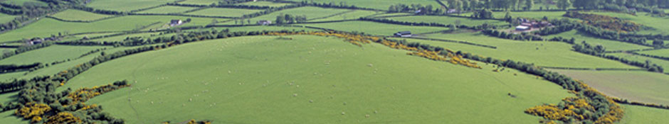 An aerial view of Dun Ailinne looking SW (abstract detail photo)